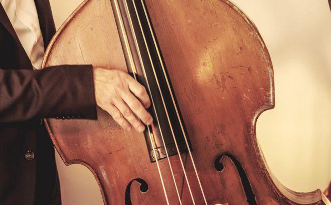 Professionele jazz bassist